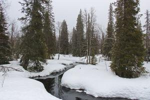 pyhäjoki keväällä
