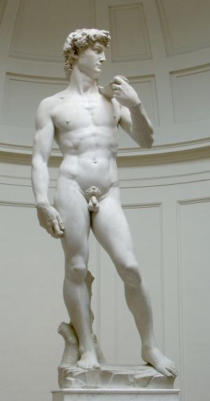 koko David-patsas, Michelangelo