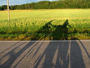 Kahden pyöräilijän varjo pelllon reunassa.