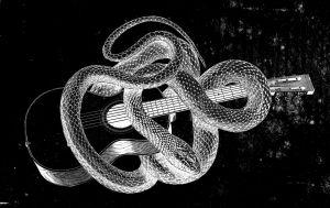 käärme ja kitara