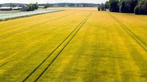 Ilmakuva Suomesta kesällä.