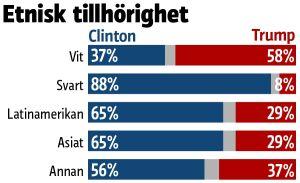 Grafiken visar att 58 procent av de vita röstade på Trump medan Clinton har överlägset majoritetsstöd bland de övriga väljargrupperna.