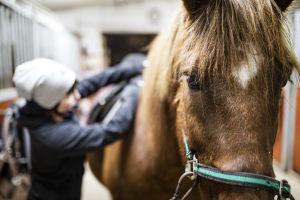Salla Huhtala Väiski-hevosen kanssa.