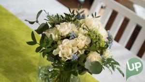 Kuvassa kukkia.