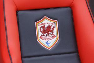 Cardiff City tog in en drake i sitt lagmärke.
