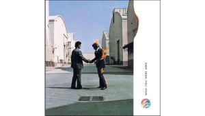 Mollys vinyl 15 Pink Floyd B