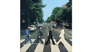 Mollys vinyl 26 Abbey road B