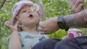 Tuhkimotarinoiden Ullan tytär puhaltaa voikukkaa