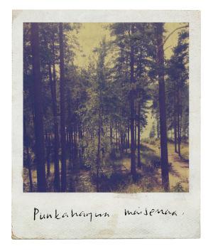 Maamme kirja 2017: Savonmaa, Punkaharjun maisema