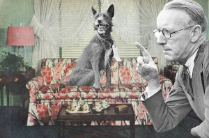 Koira istuu sohvalla, ja mies komentaa.