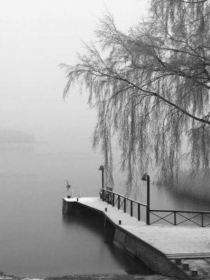 en brygga i dimman