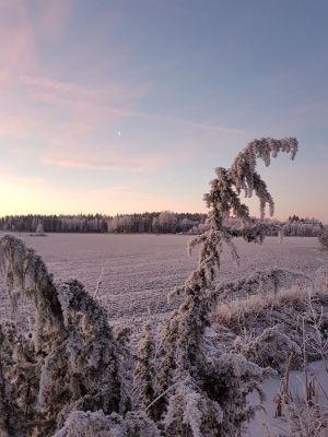 en vintervy