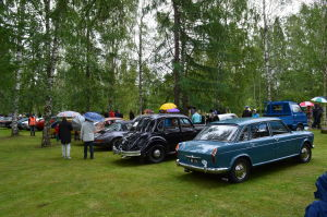 Museoautoja pysäköityinä riviin nurmikentälle, sateenvarjoja piteleviä ihmisiä käyskentelemässä autojen lomassa,