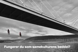 Suohpanterrors affisch om kolonisering av Sápmi.