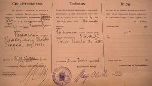 Toivo Kuulan passi vuodelta 1916.