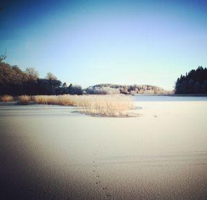 Ett vintrigt landskap