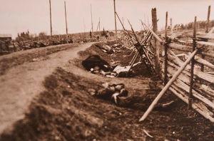 Nuoraa, Viipurin pitäjä 28. huhtikuuta 1918. Punaisten ruumiita ja kuollut hevonen tien varressa.