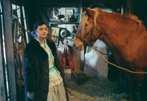Nina Lumberg ja Jalo-hevonen