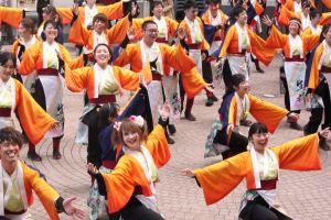 En grupp dansare som utför den japanska dansen yosakoi. De bär alla dräkter i orange. Dräkterna har vida ärmar.