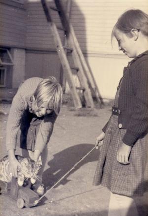Tytöt leikkivät kissan kanssa.