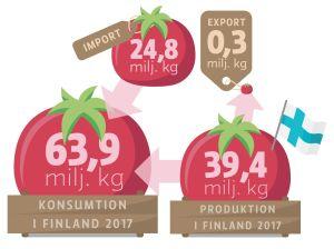 Grafik över hur många miljoner kilo färska tomater som konsumeras i Finland 2017.