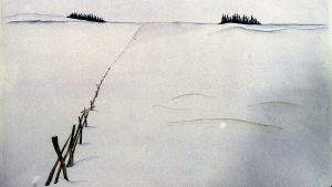 Kuliss för hararna, 1998