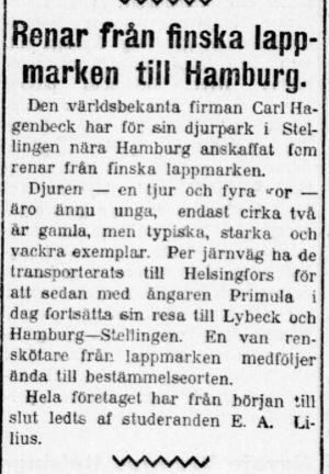 Notis i Hufvudstadsbladet 9.10.1909 om renar från lappland på väg till Hamburg för utställning.