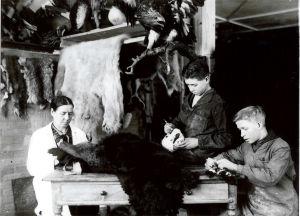 Svartvitt foto: kvinna i vit rock och två unga pojkar arbetar på att stoppa upp ett stort djur, förmodligen en björn.