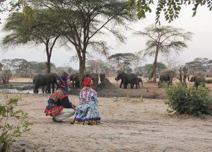Markku Laakso och Annika Dahlsten i samedräkter ser på elefanter i Senyati i Botswana.