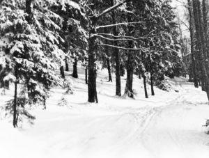 Erkki Melartinin ottama valokuva Pukinmäestä talvella 1930-luvulla.