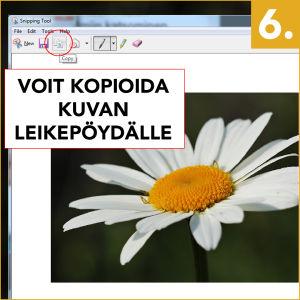 Voit kopioida kuvan leikepöydälle Copy-painikkeella (Kopioi).