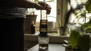 kahvinvalmistuslaite, kahviprässi