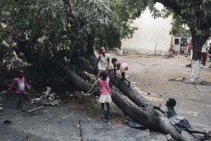 Lapsia kiipeilemässä puussa hätämajoituskeskuksen pihalla Beirassa Mosambikissa.