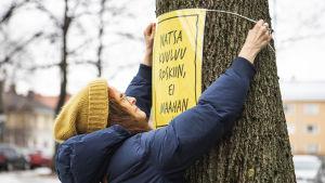 """Nainen ripustaa puuhun """"Natsa kuuluu roskiin, ei maahan"""" -kylttiä."""