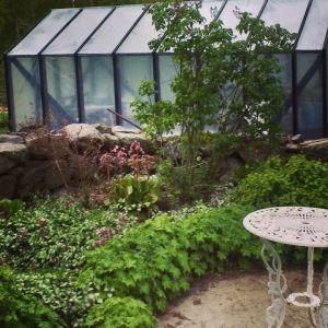 Ett växthus.