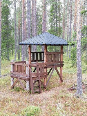 Koja av restvirke. Kalle Korhonen, Rovaniemi.