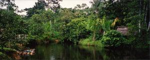 Joki Amatzoniassa