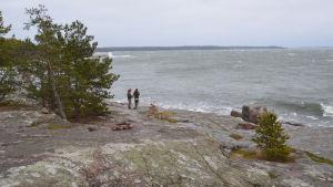 En strand med stora släta stenar. Vågor slår mot stenarna och himlen är grå. På berget står två personer, en håller i ett fiskespö.