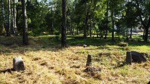 Sorvalin hautausmaa Viipurissa kesällä 2019.
