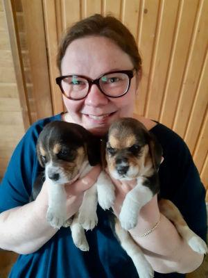 Oopperalaulaja Jenni Lättilä kaksi koiranpentua sylissään.