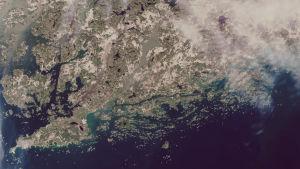 En satellitbild över Raseborg och Hangö där Pojovikens vatten ser brunt ut.