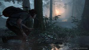 Ellie piiloutuu metsässä vastustajilta.