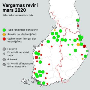 Karta på vargarnas revir i Finland i mars 2020.