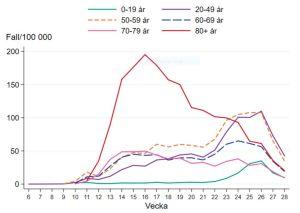 Kurvor som visar sjunkande coronaincidens i alla åldersgrupper de senaste veckorna i Sverige.