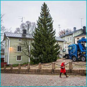En kvinna går förbi en stor julgran