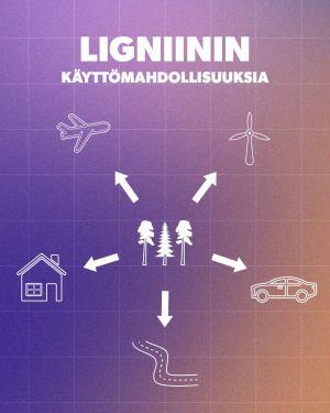 Infografiikka lingiinin käyttömahdollisuuksista. Niitä ovat muun muassa autot, lentokoneet, tuulimyllyjen siivet, tiet ja rakennukset.