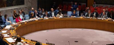FN:s säkerhetsråd samlat den 22 augusti 2019.
