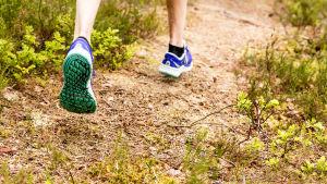 Metsäpolulla juostaan.