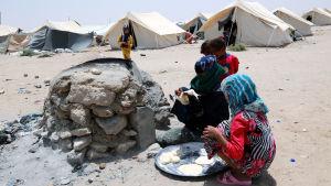 Flyktingläger nära Fallujah i västra Irak i juni 2016.