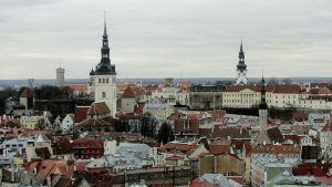 Panoramabild över Tallinn.